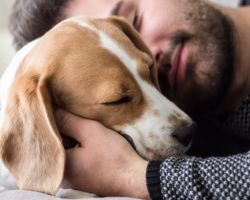 Owning a dog is influenced by our genetic makeup