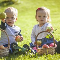 Why twins are good for your health